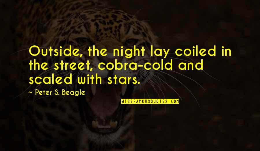 Love From Classic Movies Quotes By Peter S. Beagle: Outside, the night lay coiled in the street,
