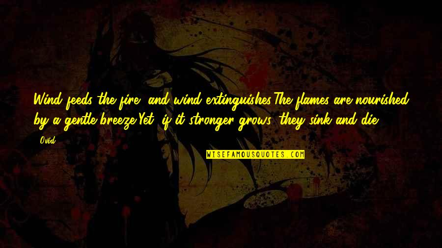 Love Gentle Quotes By Ovid: Wind feeds the fire, and wind extinguishes:The flames