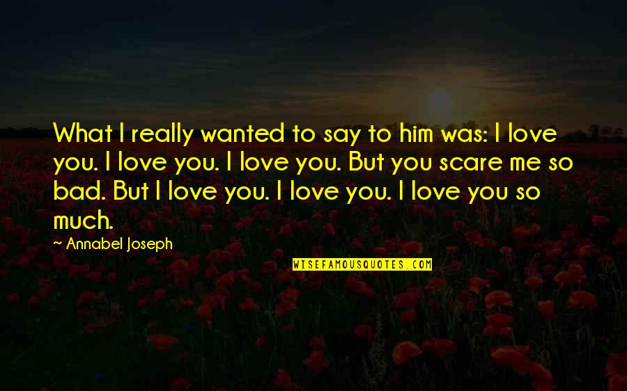Love Him Much Quotes By Annabel Joseph: What I really wanted to say to him