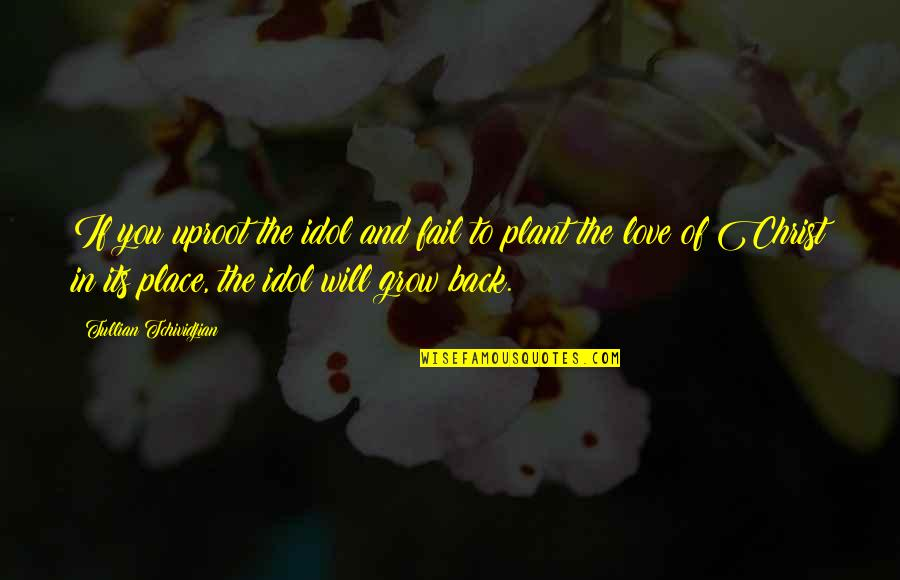 Love In Christ Quotes By Tullian Tchividjian: If you uproot the idol and fail to