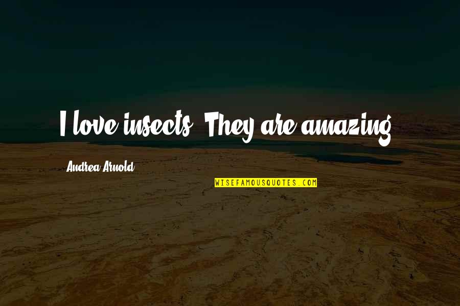 Love Insects Quotes By Andrea Arnold: I love insects. They are amazing.