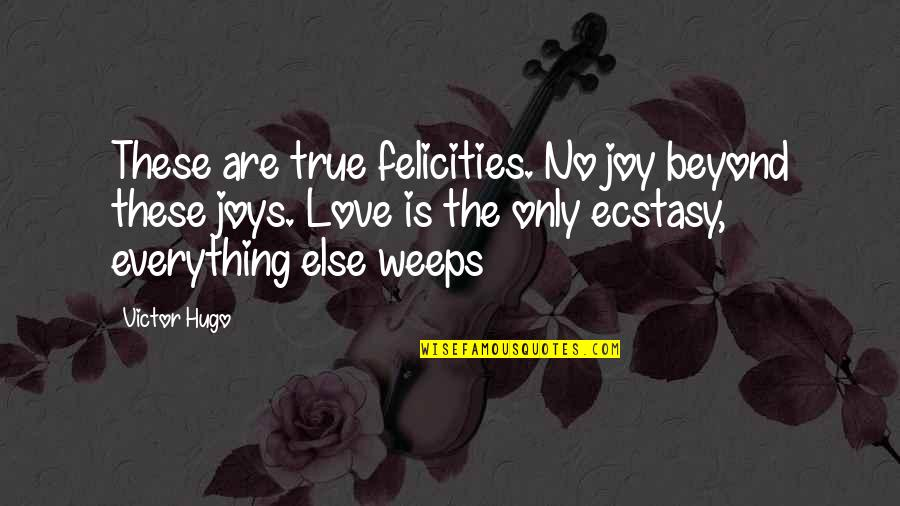 Love Is Beyond Everything Quotes By Victor Hugo: These are true felicities. No joy beyond these