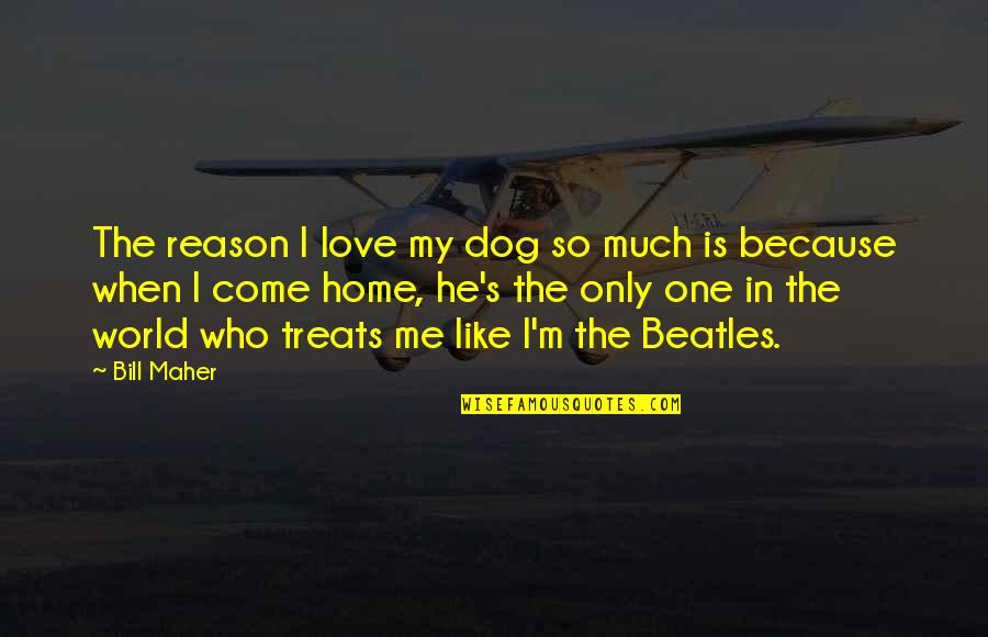 Love Is Like Home Quotes By Bill Maher: The reason I love my dog so much
