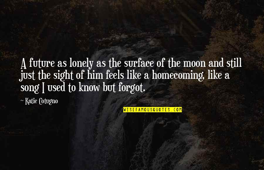 Love Is Like Home Quotes By Katie Cotugno: A future as lonely as the surface of