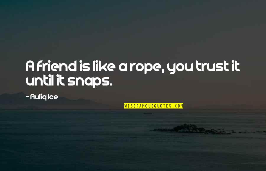 Love Is Like Nature Quotes By Auliq Ice: A friend is like a rope, you trust