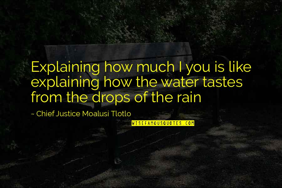 Love Is Like Nature Quotes By Chief Justice Moalusi Tlotlo: Explaining how much I you is like explaining