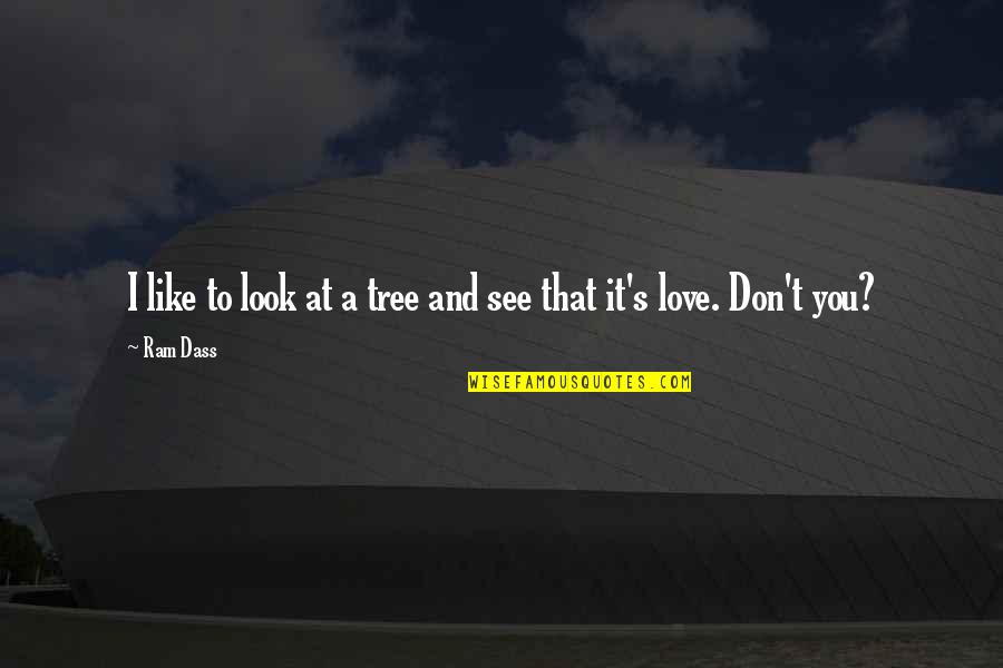Love Is Like Nature Quotes By Ram Dass: I like to look at a tree and