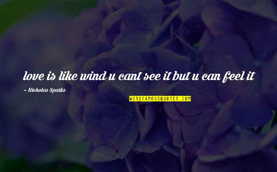 Love Like A Wind Quotes By Nicholas Sparks: love is like wind u cant see it
