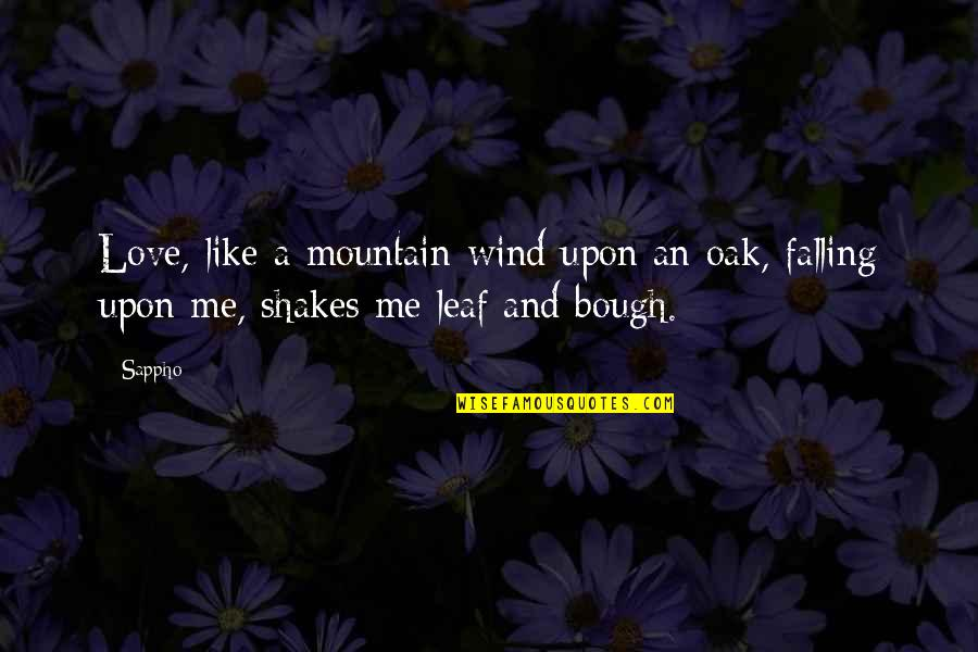 Love Like A Wind Quotes By Sappho: Love, like a mountain-wind upon an oak, falling