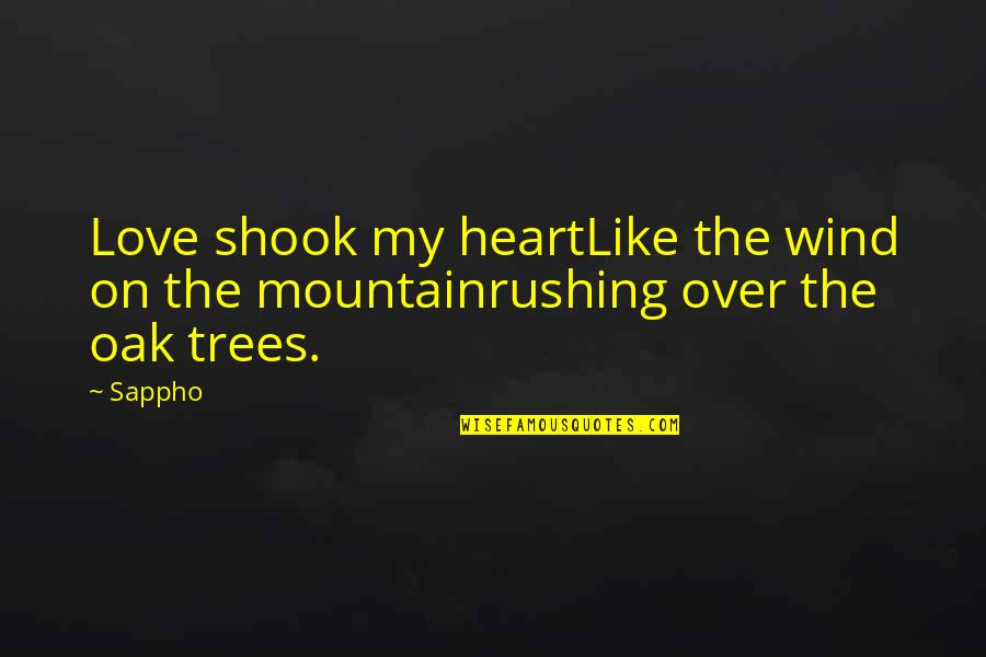 Love Like A Wind Quotes By Sappho: Love shook my heartLike the wind on the