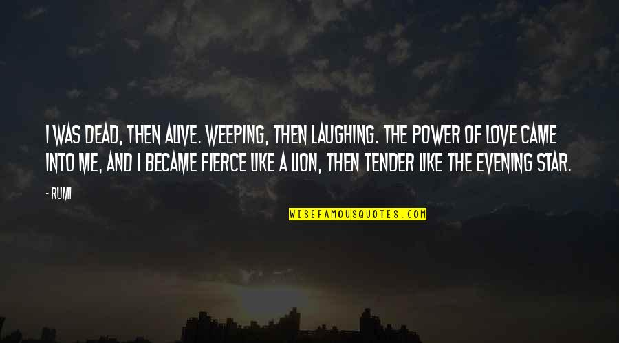 Love Me Tender Quotes By Rumi: I was dead, then alive. Weeping, then laughing.