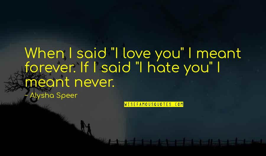 "Love Never Meant To Be Quotes By Alysha Speer: When I said ""I love you"" I meant"