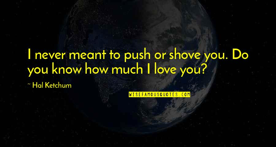 Love Never Meant To Be Quotes By Hal Ketchum: I never meant to push or shove you.