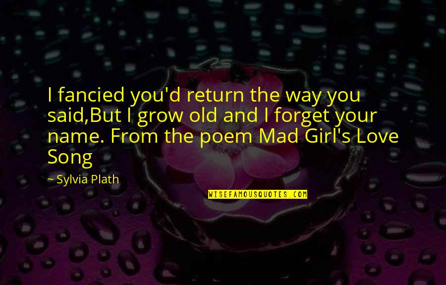 Love No Return Quotes By Sylvia Plath: I fancied you'd return the way you said,But