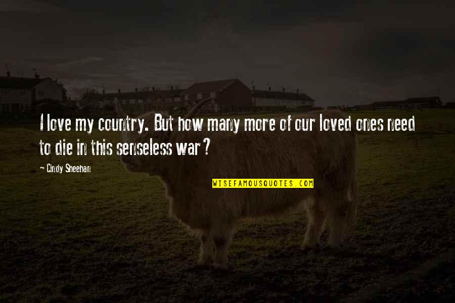 Love Of Country Quotes By Cindy Sheehan: I love my country. But how many more