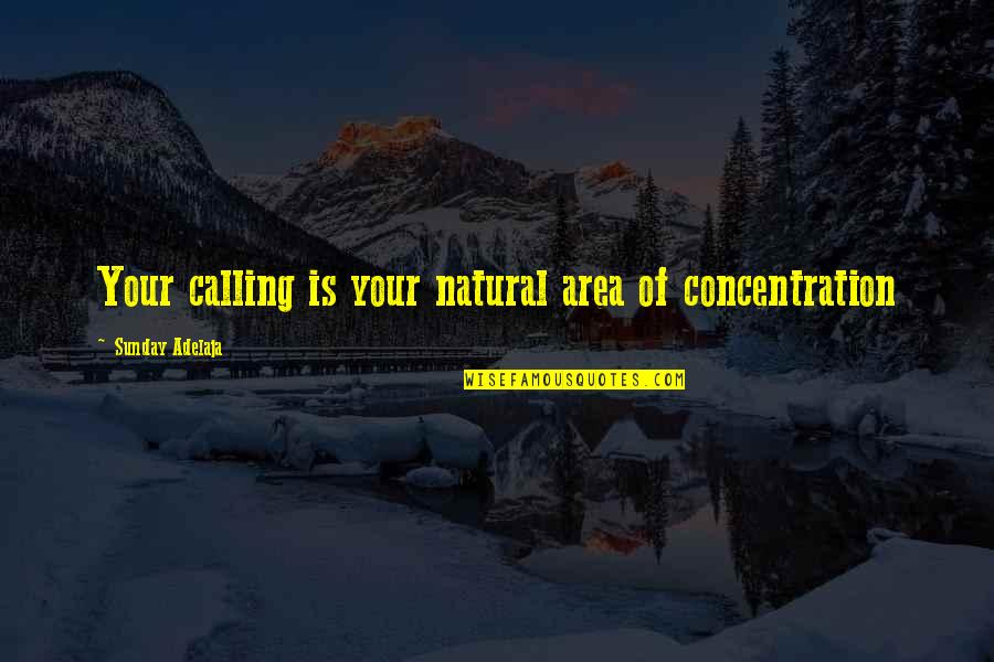 Love Of Money Quotes By Sunday Adelaja: Your calling is your natural area of concentration