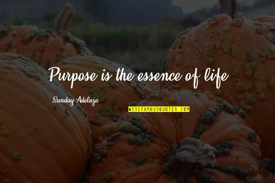Love Of Money Quotes By Sunday Adelaja: Purpose is the essence of life