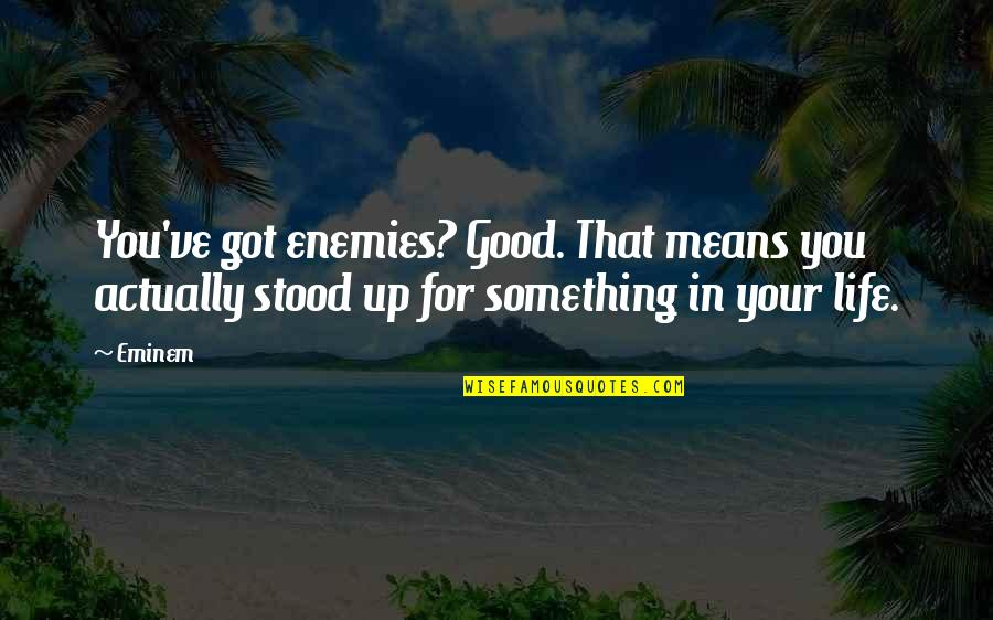 Love Of Two Brothers Quotes By Eminem: You've got enemies? Good. That means you actually