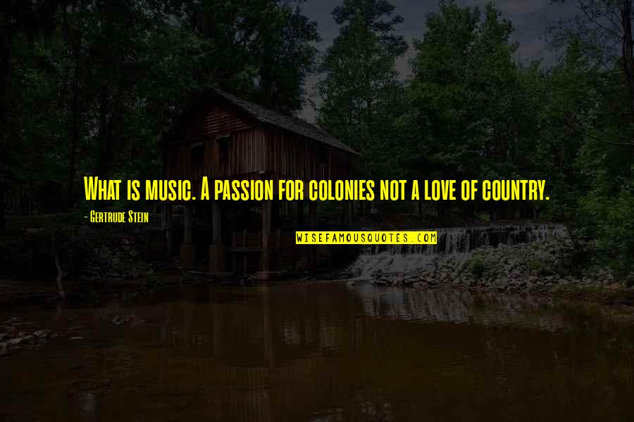 Love Of Your Country Quotes By Gertrude Stein: What is music. A passion for colonies not