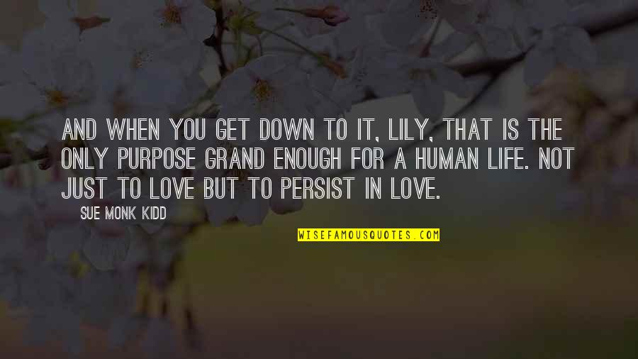 Love Only For You Quotes By Sue Monk Kidd: And when you get down to it, Lily,