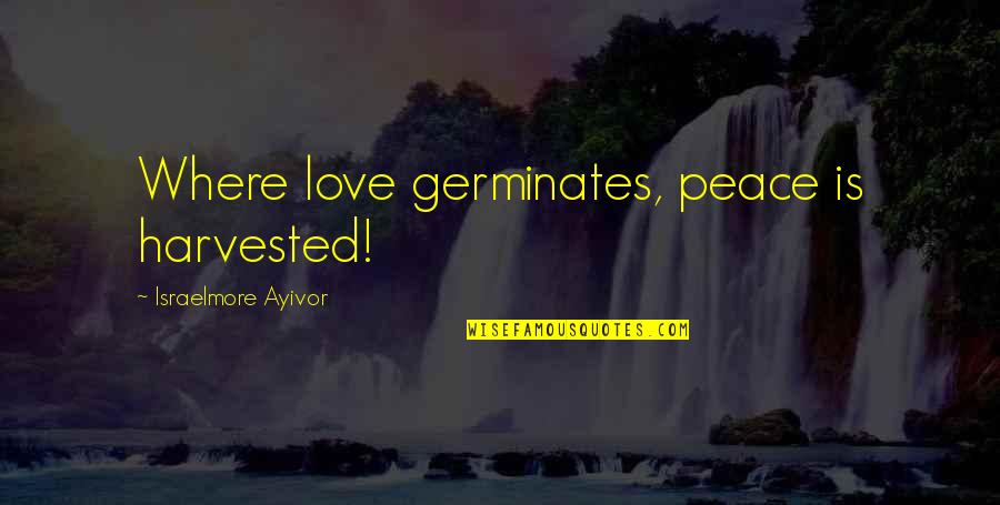 Love Peace Short Quotes By Israelmore Ayivor: Where love germinates, peace is harvested!