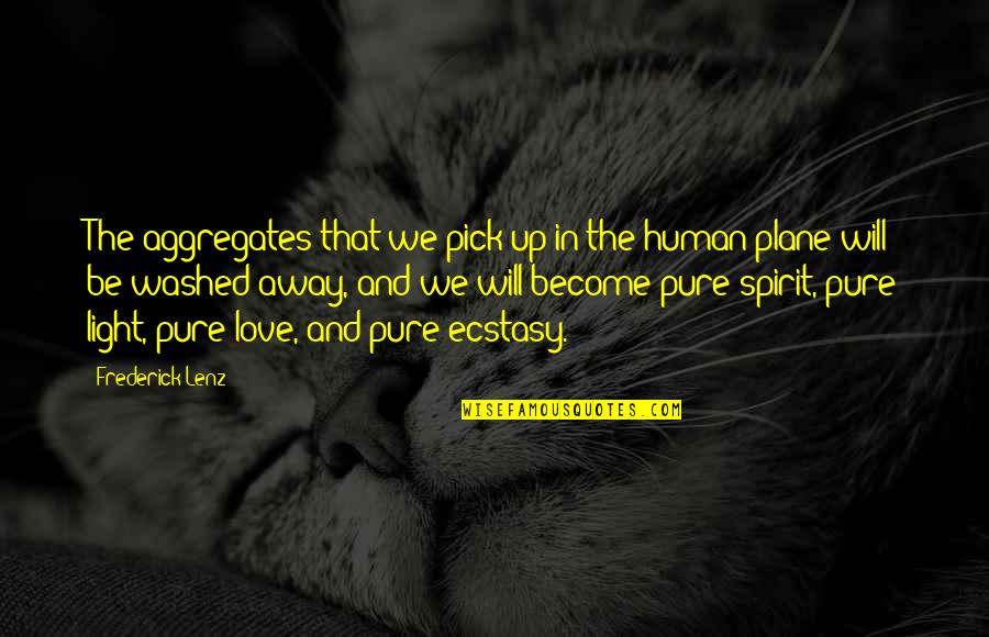 Love Pick Up Quotes By Frederick Lenz: The aggregates that we pick up in the
