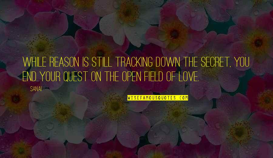 Love Quest Quotes By Sanai: While reason is still tracking down the secret,