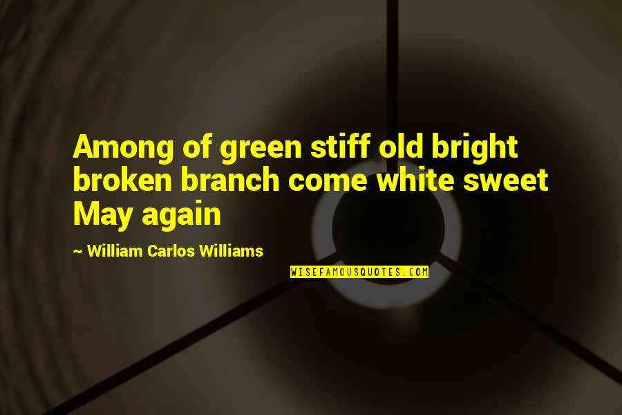 Love Red Hot Quotes By William Carlos Williams: Among of green stiff old bright broken branch