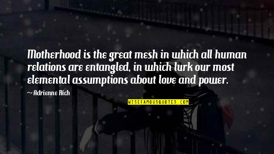 Love Rich Quotes By Adrienne Rich: Motherhood is the great mesh in which all