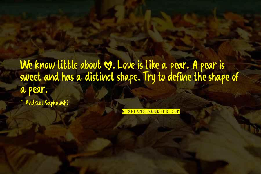 Love Shape Quotes By Andrzej Sapkowski: We know little about love. Love is like