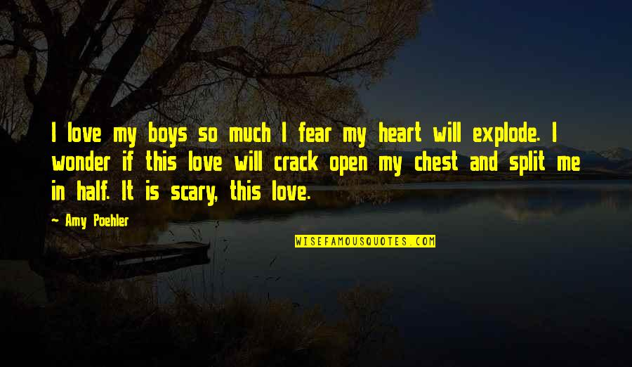 Love Split Quotes By Amy Poehler: I love my boys so much I fear