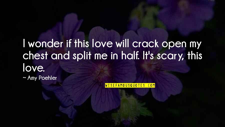 Love Split Quotes By Amy Poehler: I wonder if this love will crack open