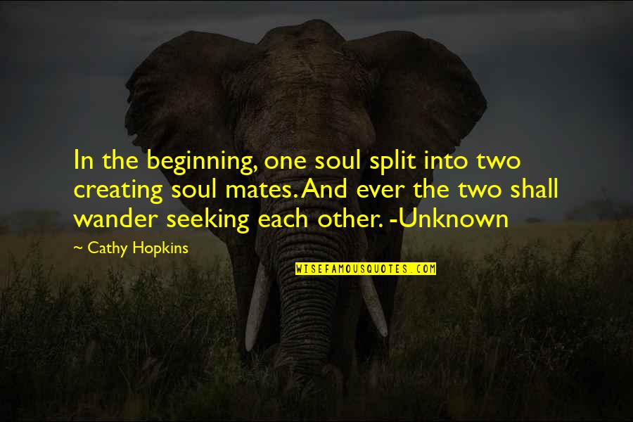 Love Split Quotes By Cathy Hopkins: In the beginning, one soul split into two