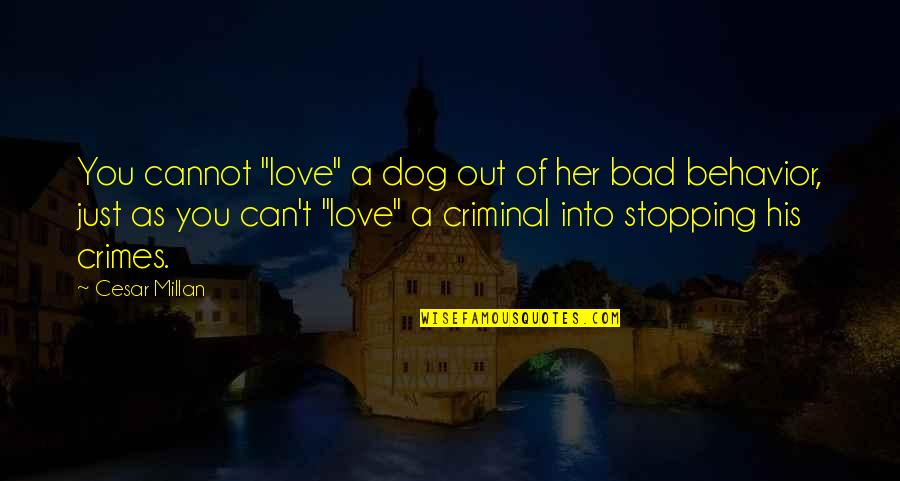 """Love Stopping Quotes By Cesar Millan: You cannot """"love"""" a dog out of her"""