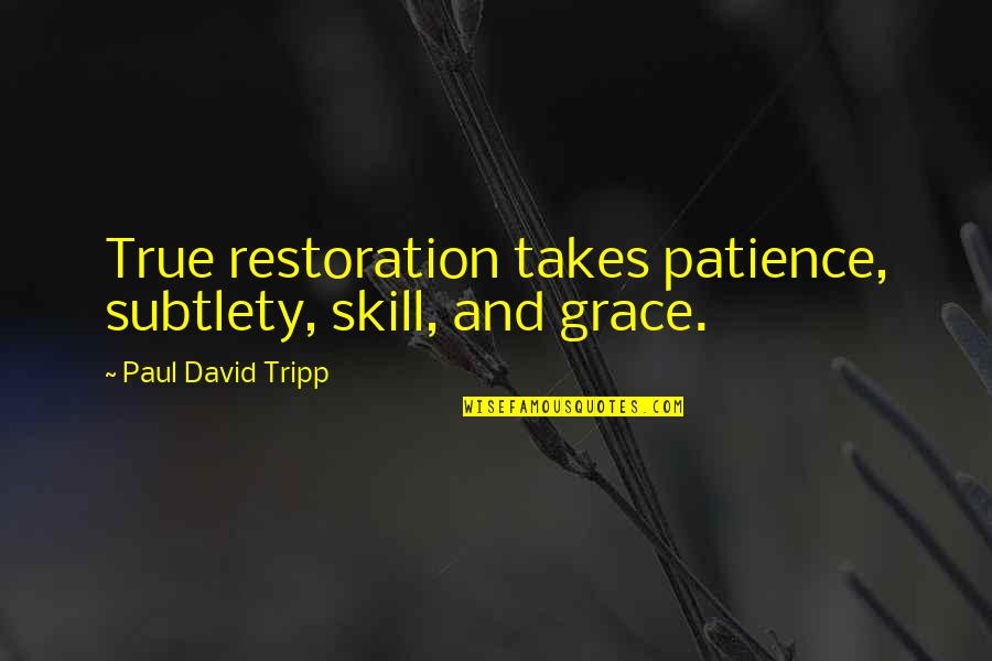 Love Swami Ramdas Quotes By Paul David Tripp: True restoration takes patience, subtlety, skill, and grace.