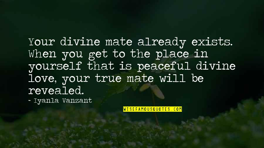 Love That Is True Quotes By Iyanla Vanzant: Your divine mate already exists. When you get