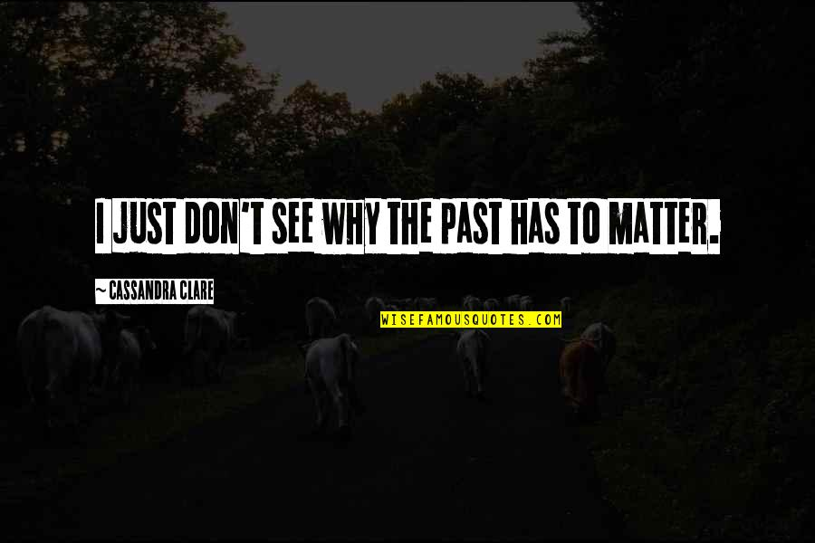 Love The Past Quotes By Cassandra Clare: I just don't see why the past has