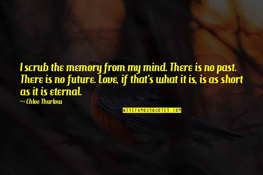 Love The Past Quotes By Chloe Thurlow: I scrub the memory from my mind. There