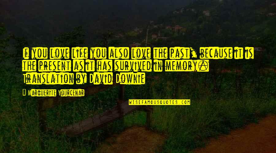 Love The Past Quotes By Marguerite Yourcenar: If you love life you also love the