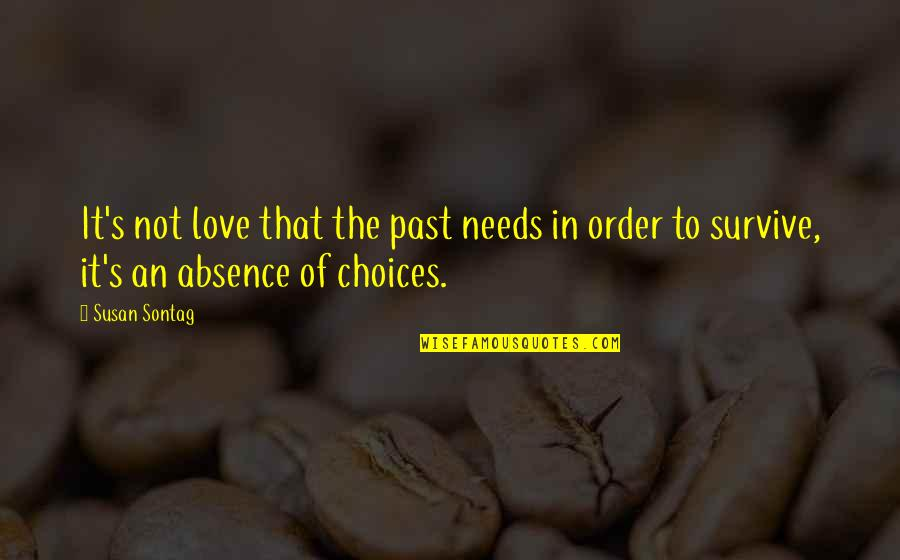 Love The Past Quotes By Susan Sontag: It's not love that the past needs in