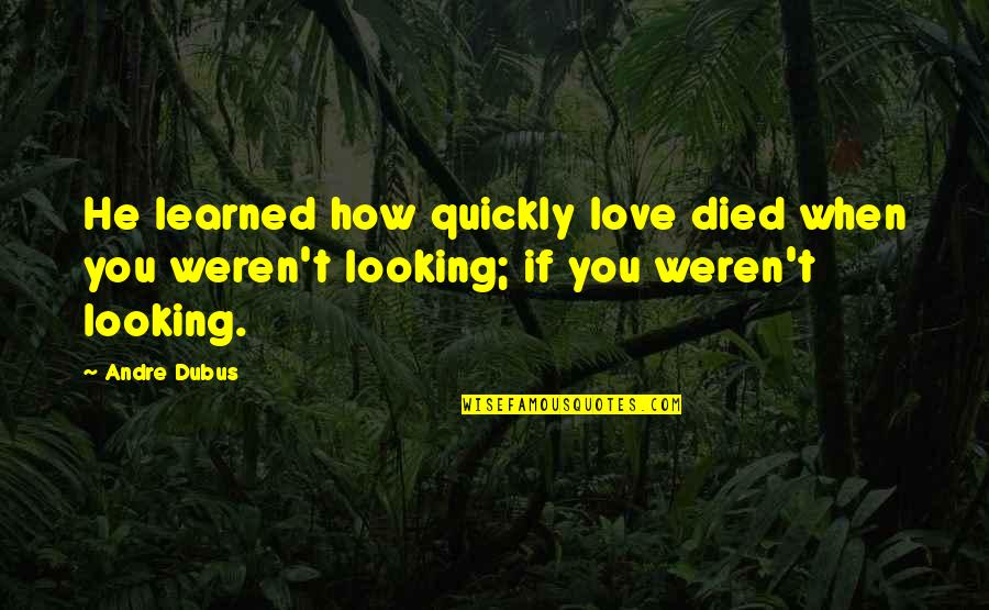Love Too Quickly Quotes By Andre Dubus: He learned how quickly love died when you