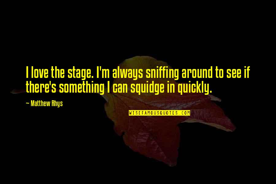 Love Too Quickly Quotes By Matthew Rhys: I love the stage. I'm always sniffing around
