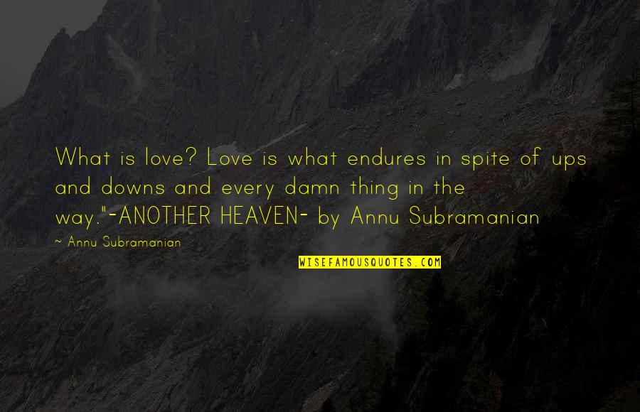 Love Ups And Downs Quotes By Annu Subramanian: What is love? Love is what endures in