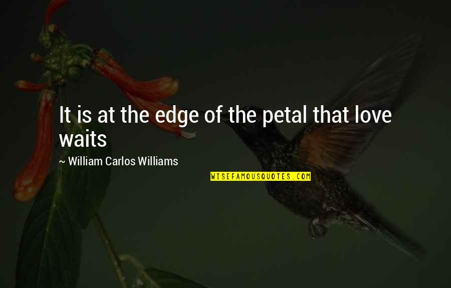 Love Waits Quotes By William Carlos Williams: It is at the edge of the petal