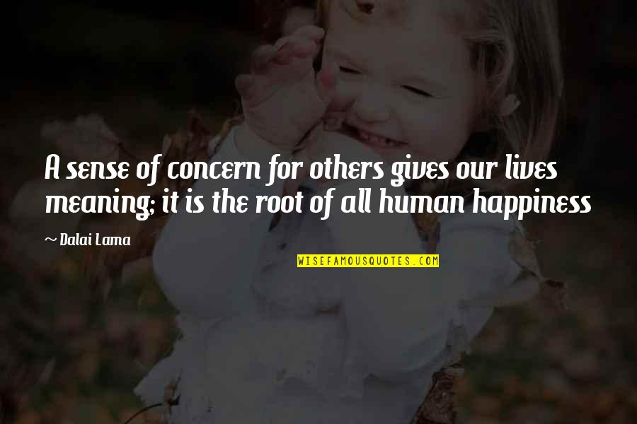 Love With Meaning Quotes By Dalai Lama: A sense of concern for others gives our