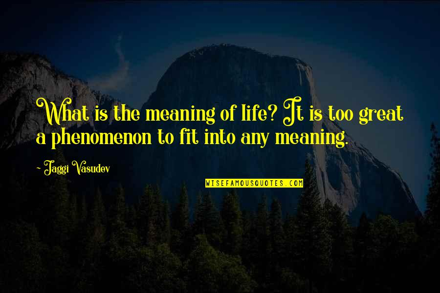 Love With Meaning Quotes By Jaggi Vasudev: What is the meaning of life? It is