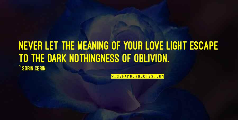 Love With Meaning Quotes By Sorin Cerin: Never let the meaning of your love light