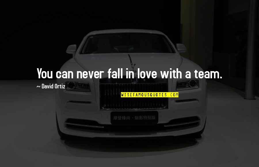Love Your Team Quotes By David Ortiz: You can never fall in love with a