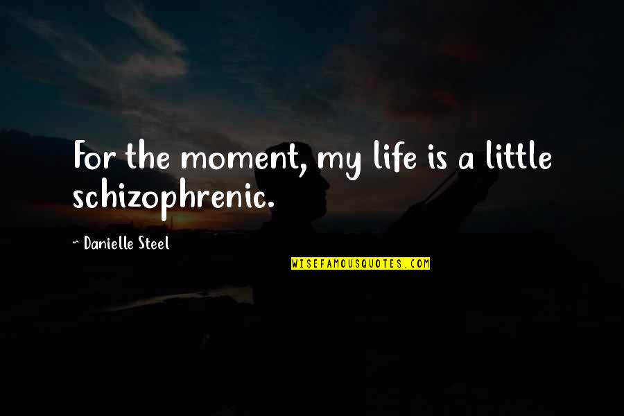Lovers Quotations Quotes By Danielle Steel: For the moment, my life is a little