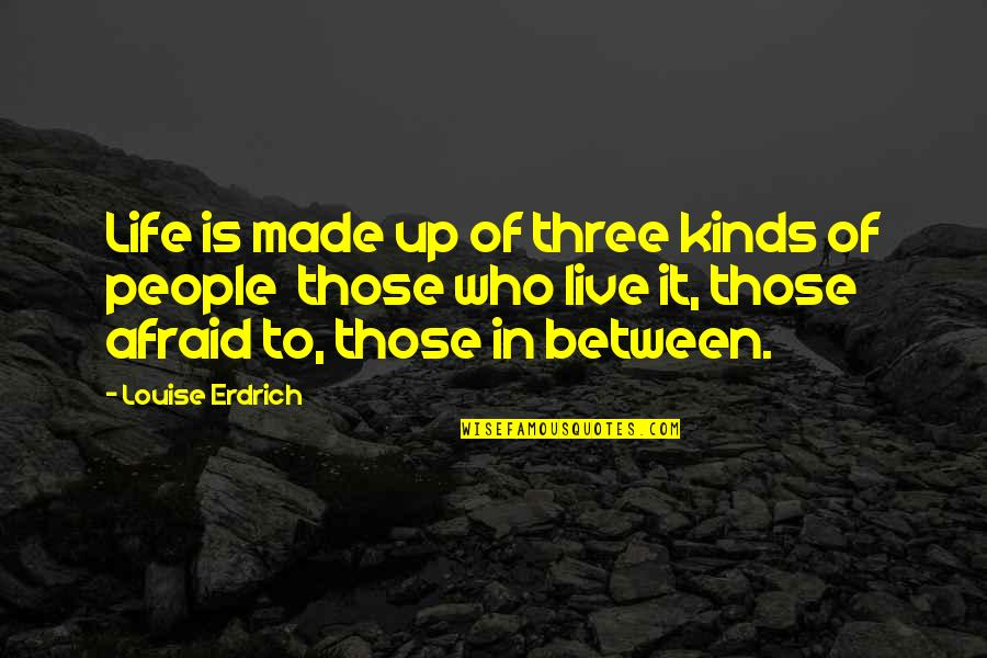 Loving My Job Quotes By Louise Erdrich: Life is made up of three kinds of